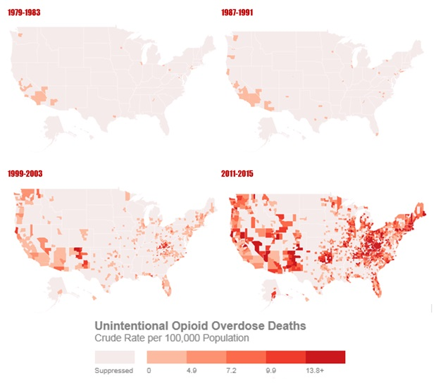 The Numbers Behind the Opioid Crisis - Social Capital Project ...